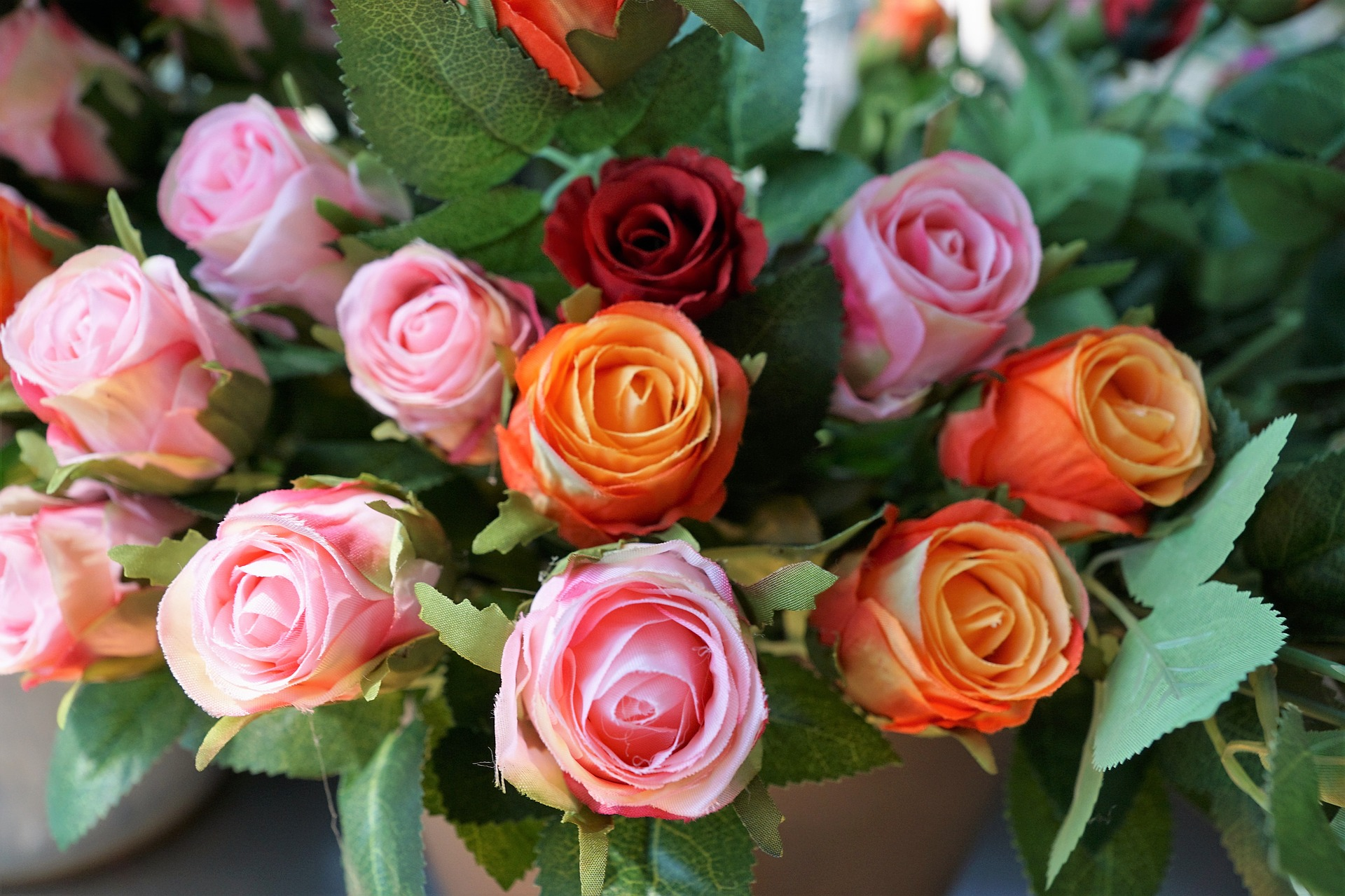 Cómo preservar tus rosas en 7 pasos