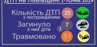 На дорогах Львівщини загиНа дорогах Львівщини загинуло сім осібнуло сім осіб