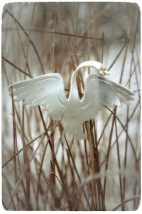 Valste triste; kuolitanssi Lemmenjoen kultasadulle kuvaa koruna myös kullankaivajien tämän hetken tunnelmia.