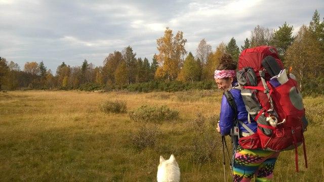 Näillä kantamuksilla kulkeminen Ivalojoen pohjoisrannan hankalassa maastossa vaati kokemusta, ja sitähän Jennyllä oli jo Kalifornian tuliaisina.