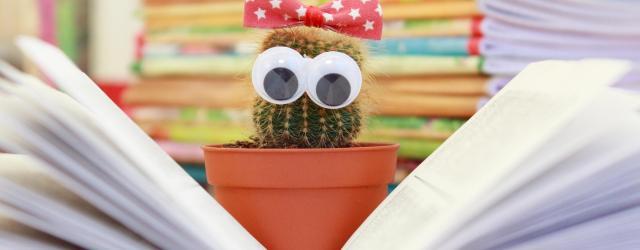 Literatur zu den Feiertagen | morguefile.com