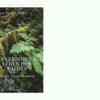 Rezension zu David George Haskells Sachbuch »Das verborgene Leben des Waldes - Ein Jahr Naturbeobachtung« / »The Forest Unseen: A Year's Watch in Nature«