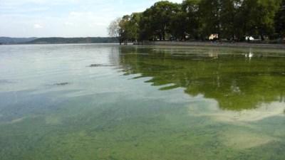 dojransko ezero