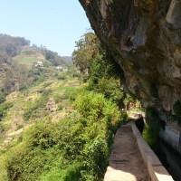 Madeira - Wanderung entlang der Levada do Norte von Estreito da Câmara de Lobos zum Cabo Girão