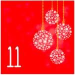 Nr_11