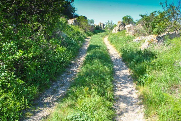 skogsväg 2