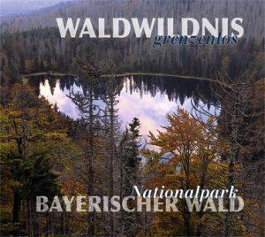 Waldwildnis grenzenlos Nationalpark Bayerischer Wald