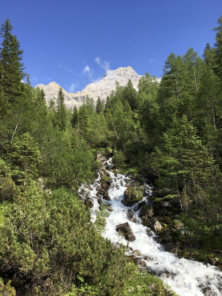 Frisch aus dem Berg gesprudelt: Schalanza