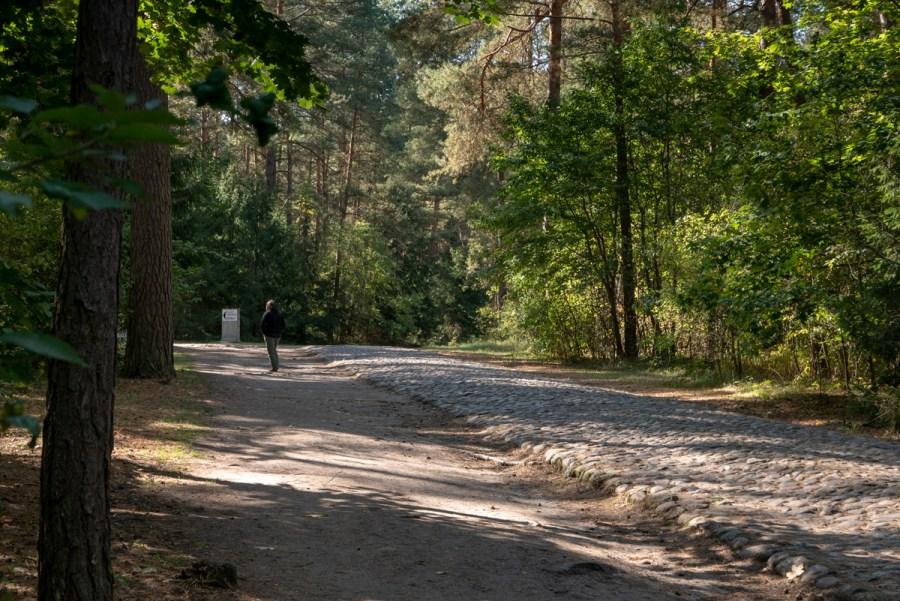 Waldweg nach Treblinka II