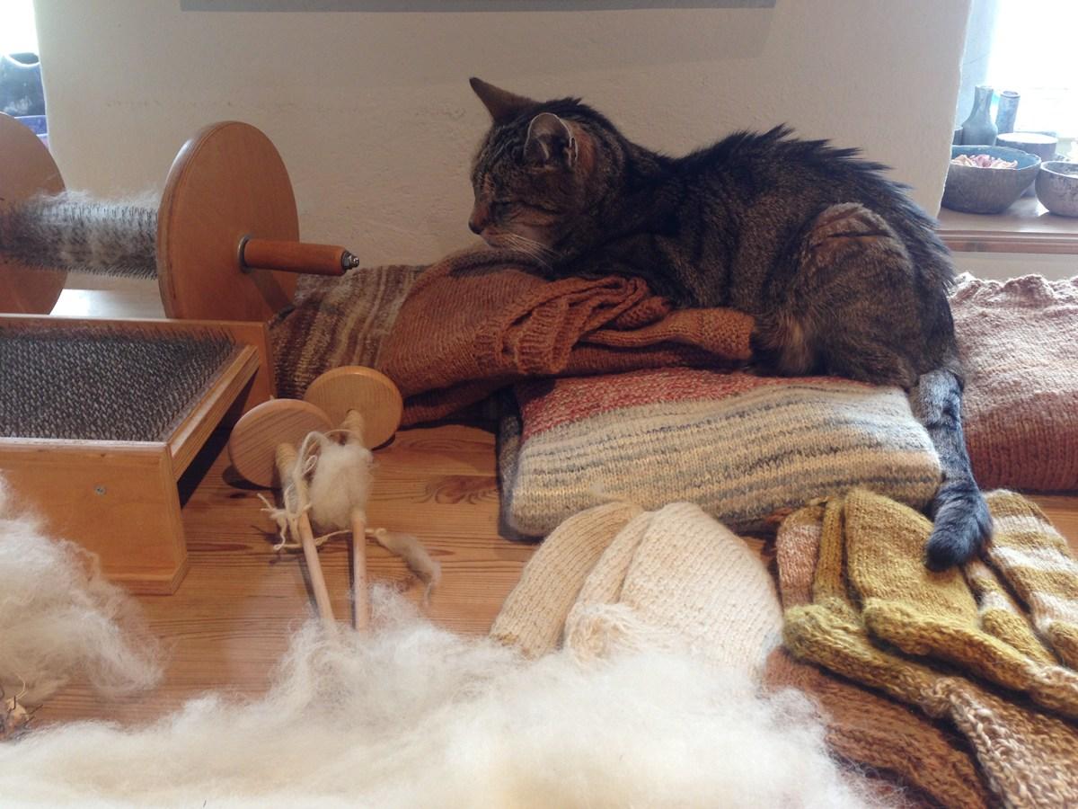 Rückblick: Wollspinnkurs »Vom Vlies zum Wollfaden«