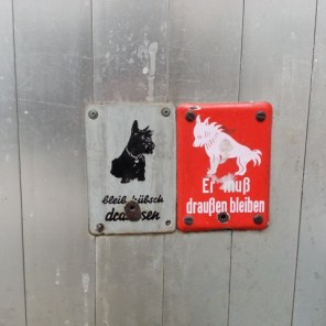 Hunde (unfreiwillige Streetarts)