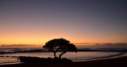 Hawaii -5920