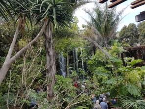 Palma Aquarium (6)