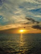 Blick auf den Golf von Mexico - Key West