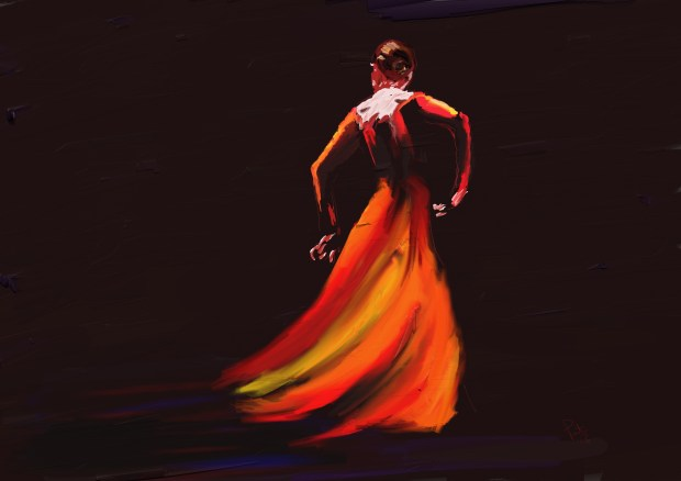 Red Flamenco av Patrick McDonald