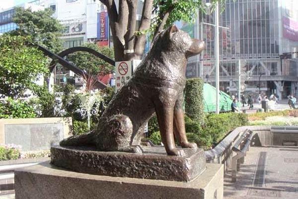 Patung Hachiko