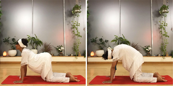 Charisma Whitefeather, Kundalini Yoga teacher in Los Angeles demonstrating how to do the cat cow posture. Kundalini Yoga Los Angeles.