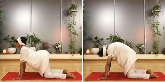 Cat Cow Kundalini Yoga Back Pain Relief