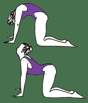 Kundalini Yoga Los Angeles. cat-cow posture in kundalini yoga los angeles