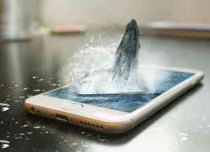 apple Qualität iphone