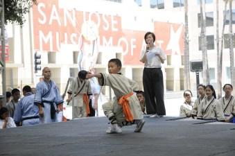 Kung Fu Tai Chi Day School Demo