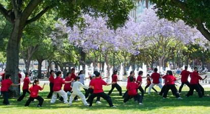 Kung Fu Tai Chi Day Seminars
