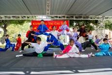 Kung Fu Tai Chi Day 2013