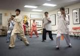 Tai Chi demonstration by the Ohlone College Tai Chi / Qigong program.