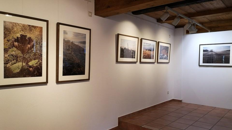 Ausstellung Fotografien Mimi Wilden - KunstGalerieHans 03-05 2020