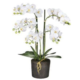 Kunstplant Orchidee / Phalaenopsis XL 5-tak wit (68 cm) - kunstplantshop.nl