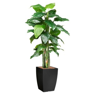 HTT - Kunstplant Philodendron in Genesis vierkant antraciet H220 cm - kunstplantshop.nl