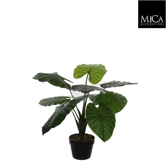 Mica Kunstplant Philodendron (h60xd60cm) - Kunstplantshop.nl