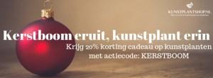 Kerstboom-eruit-2019 - Kunstplantshop.nl