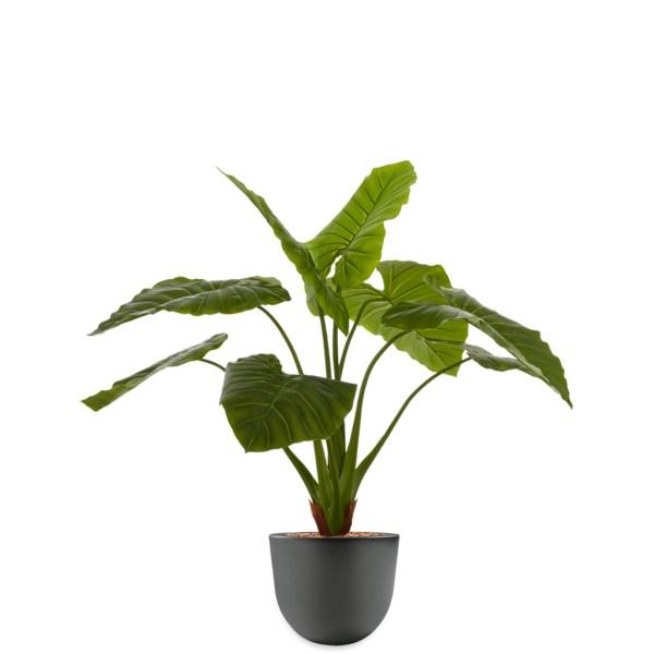 HTT - Kunstplant Philodendron in Eggy antraciet H115 cm - kunstplantshop.nl