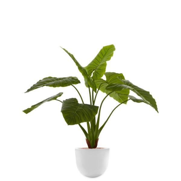 HTT - Kunstplant Philodendron in Eggy wit H115 cm - kunstplantshop.nl