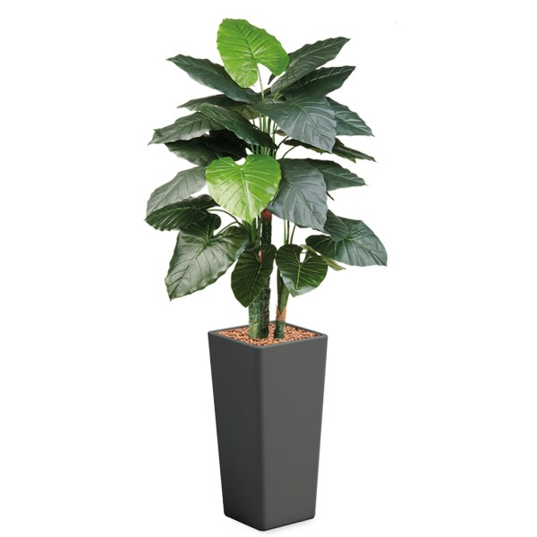 HTT - Kunstplant Philodendron in Clou vierkant antraciet H185 cm - kunstplantshop.nl