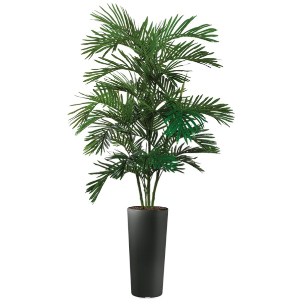 HTT - Kunstplant Areca palm in Clou rond antraciet H215 cm - kunstplantshop.nl