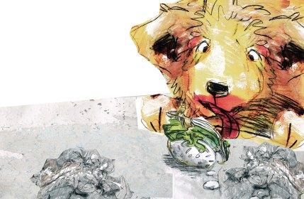 kinderbuch-sybille-goegler-hase-rettich
