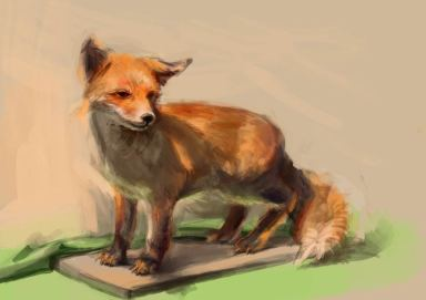 Fuchs, farbige Abbildung mit Komplementärkontrast. (Malou)
