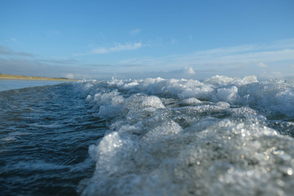 Close-Up On Uretiti Beach