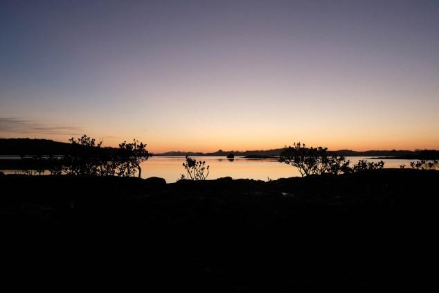 Aroha Island In The Morning