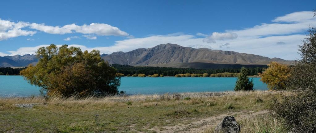 Lake Tekapo Mit Mt Dobson