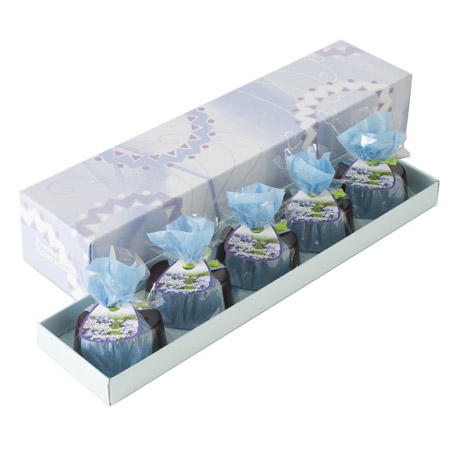 blueberry_5k_450_yoko