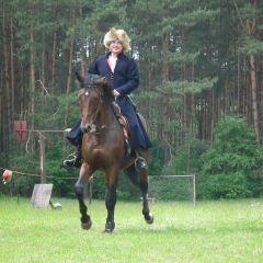 Dzień Konia w Gulczewie