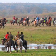 II Hubertus Szlachecki – wspaniała jeździecka impreza na terenie Gminy Dąbrówka!!!
