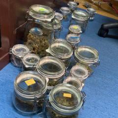 Zarzuty i dozór za uprawę i posiadanie marihuany