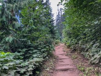 The wonderland trail.