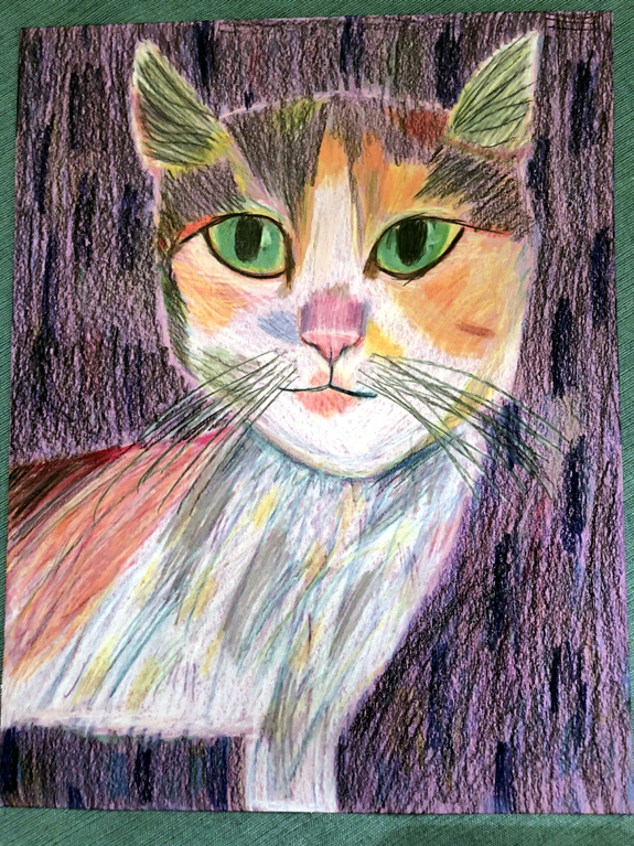 colored pencil Ellie Braddock private art lesson drawing kurt brugel teacher