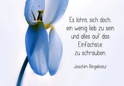 Ringelnatz Gedichte 051 Stock Photo Alamy