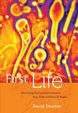 First Life book cover